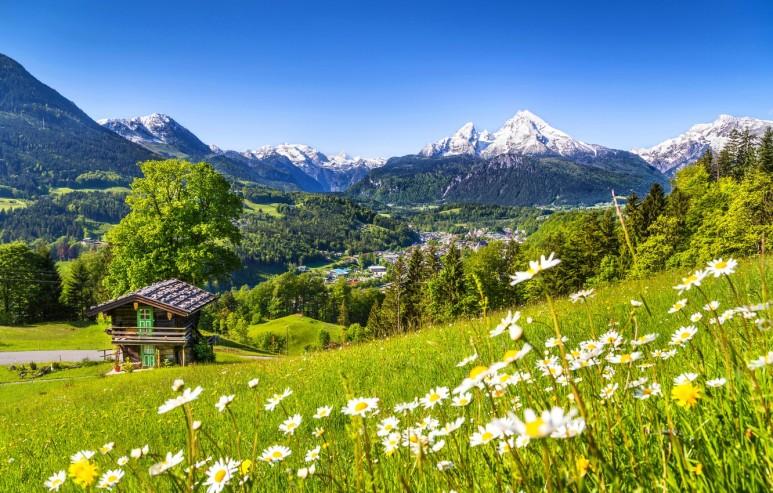 nature-spring-mountain-house-2549.jpg